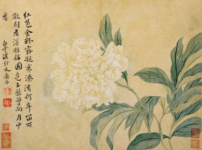 花鸟草虫-04