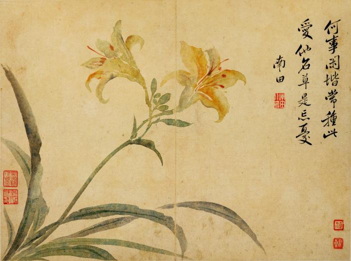 花鸟草虫-06